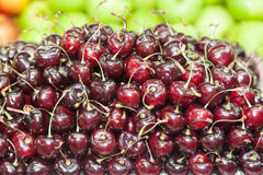 Red cherry Stock Images