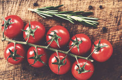 Red cherry tomato branch on rustic wooden table Royalty Free Stock Images