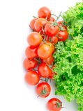 Red cherry tomato and salad lettuce Royalty Free Stock Photo