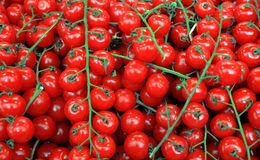 Red cherry tomatoe background Stock Photography
