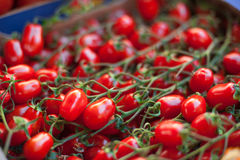 Red cherry tomatoes on market stall. Bunch of red fresh ripe cherry tomatoes on market stall closeup in selective focus Royalty Free Stock Photography