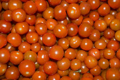 Red cherry tomatoes. Small round red cherry tomatoes close up for background Royalty Free Stock Photos