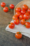 Red cherry tomatoes Stock Image