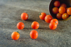 Red cherry tomatoes Royalty Free Stock Photos