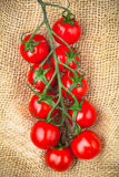 Red cherry tomatoes twig on sacking. Red cherry tomatoes twig on brown sacking Stock Image
