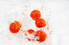 Red cherry tomatoes with water splash royalty free stock photo