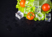 Red cherry tomatos, green salad and ice cubes on black wet table Stock Image