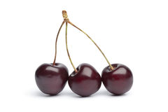 Red cherry triplets on stalks Royalty Free Stock Image