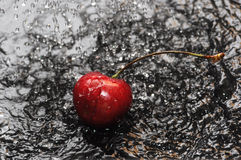 Red cherry in water Royalty Free Stock Photo