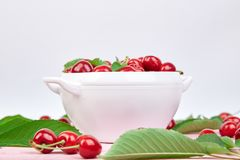 Red cherry in white bowl. On pink background. Summer or spring concept. Harvest. Some cherries near the bowl Stock Photo