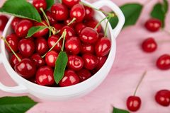 Red cherry in white bowl. On pink background. Summer or spring concept. Harvest Stock Image