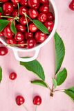 Red cherry in white bowl. On pink background. Summer or spring concept. Harvest. Some cherries near the bowl. Flat lay. Top view Stock Photos