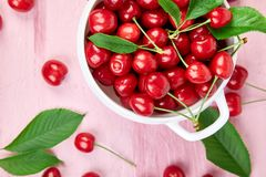 Red cherry in white bowl. On pink background. Summer or spring concept. Harvest. Some cherries near the bowl. Flat lay. Top view Royalty Free Stock Photo