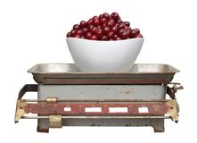 Red cherry in a white cup on old mechanical scales isolated on w Royalty Free Stock Photo