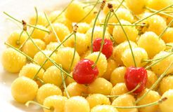 Red cherrys Royalty Free Stock Image
