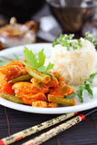 Red chicken curry stripes with rice Royalty Free Stock Photography