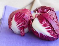 Free Red Chicory Royalty Free Stock Photo - 62404375