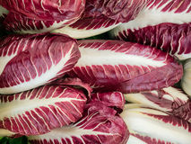 Red chicory on a farmers market Stock Image
