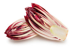 Red chicory Stock Image