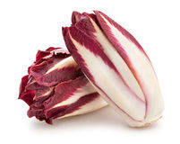 Red chicory Royalty Free Stock Photography