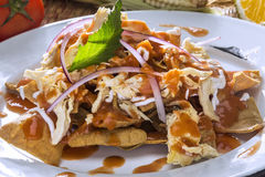 Red Chilaquiles with Chicken Royalty Free Stock Photos