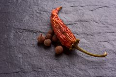 Red Chile pepperlonely dried red chilli pepper and spices stock photo