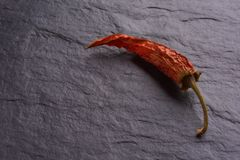 Lonely Dried Red Chilli Peppers royalty free stock photos