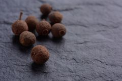 Allspice black pepper macro royalty free stock photo