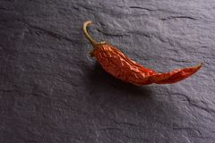 Red Chile pepper royalty free stock photos