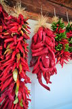 Red Chile Peppers Royalty Free Stock Images