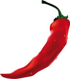 red Chilean pepper Royalty Free Stock Photography