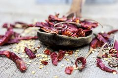 Popular Resham patta red chilli in wooden scoop. Psyllium Royalty Free Stock Photo