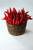 Red chili Royalty Free Stock Photos