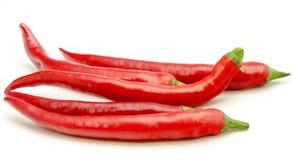 Red chili Stock Image