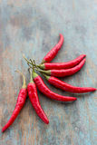 Red Chili. A bunch of red hot chili peppers Royalty Free Stock Photos