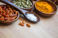 Red chili, cardamom and curcuma in wodden bowls, spices as corne Stock Photos