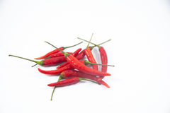 Red chili or chilli cayenne pepper isolated on white background Stock Images