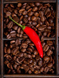 Red chili and coffee beans Stock Images