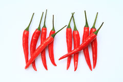 Red Chili Counting Royalty Free Stock Photography