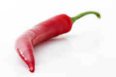 Red chili depth Stock Images