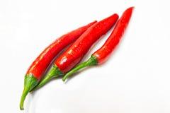 Red chili fresh Royalty Free Stock Photos