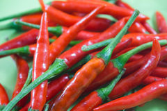 Red chili Royalty Free Stock Images