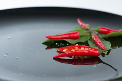 Red chili on green leaf and black dish Royalty Free Stock Images