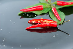 Red chili on green leaf and black dish Stock Photos
