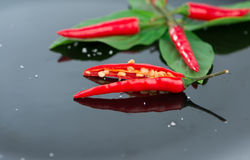 Red chili on green leaf and black dish Royalty Free Stock Image