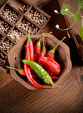 Red chili, green and orange Stock Photos