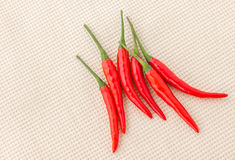 Red chili. Red hot chili on fabtic back ground Royalty Free Stock Image