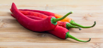 Red chili. Red hot chili pepper on wooden cutting board Royalty Free Stock Photo