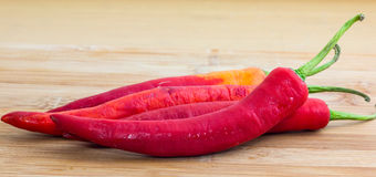 Red chili. Red hot chili pepper on wooden cutting board Royalty Free Stock Photography