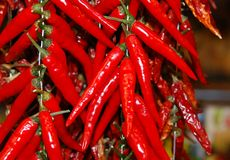 Red chili hot peppers Stock Photo